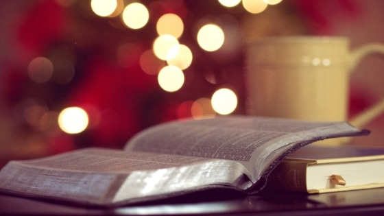 God With Us in the Word: The Gospels