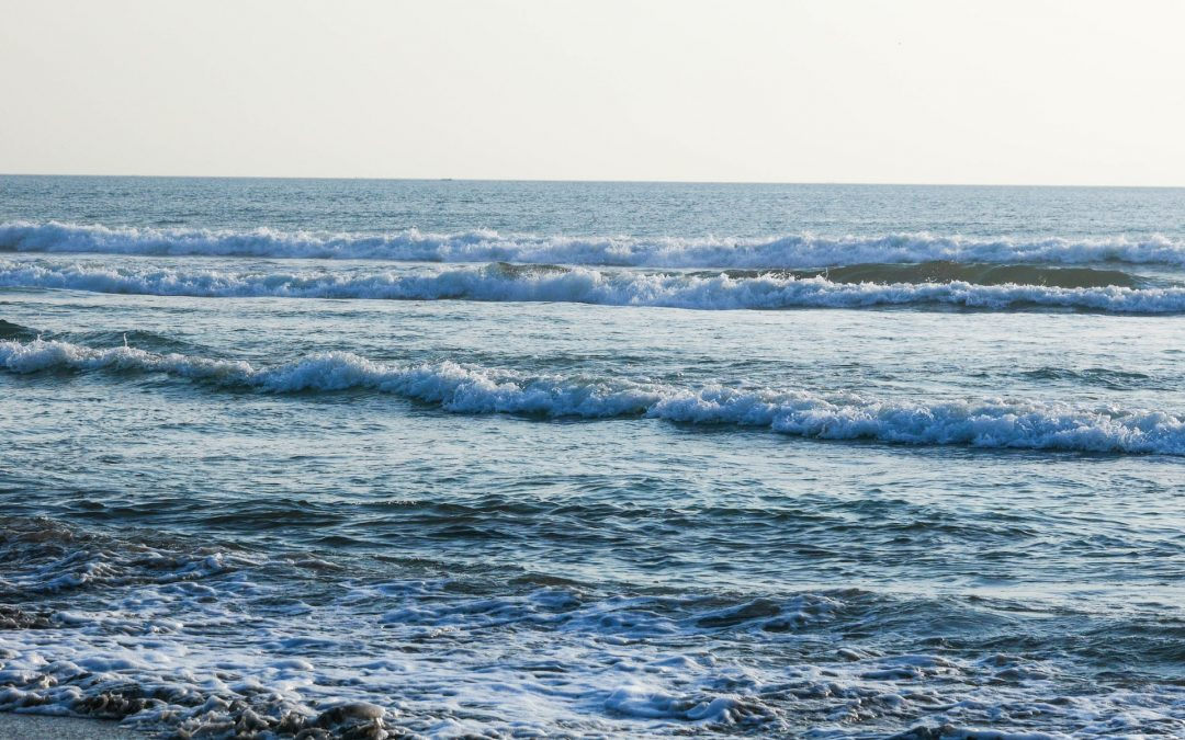 To Know, To Love, and To Follow: Waves of Love